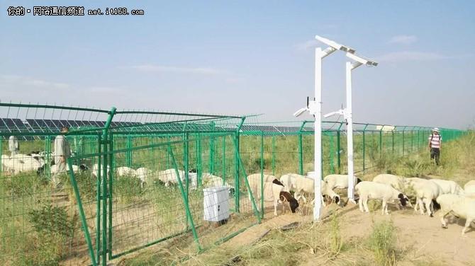 国内首个羊联网诞生,华为智慧牧业方案